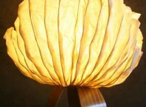 Clam Shell Lamp.JPG